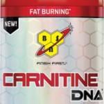 BSN DNA carnitine